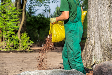 Image of person pouring mulch