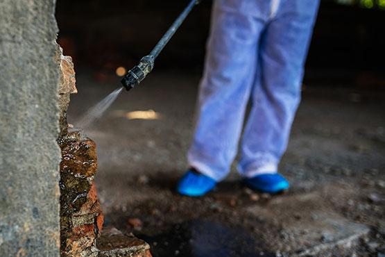 Termite Exterminator Spraying